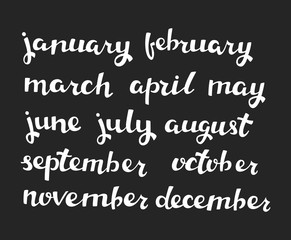 Hand-drawn Calendar Set. Set of Months of the Year. Vector Calligraphy.