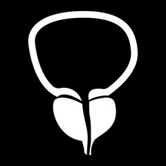 The prostate gland and bladder white color icon .