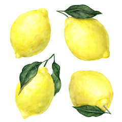 Vector watercolor hand drawn lemons with leaves set isolated on white