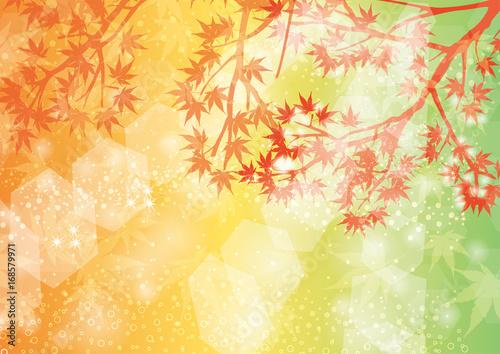 輝く紅葉の背景イラストaサイズ比率fotoliacom の ストック画像と