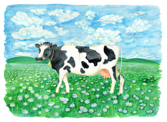 Cute cow on the field with flowers and against sky with clouds