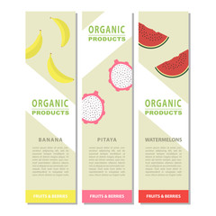 Template design fruits vertical banner.