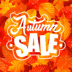 Lettering of Autumn Sale Text and Fall Leaves Seamless Pattern. Vector Illustration