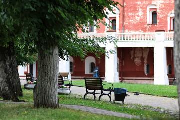park bench tree