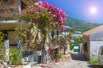Wall Mural - Traditional street with house and flower in Greece.