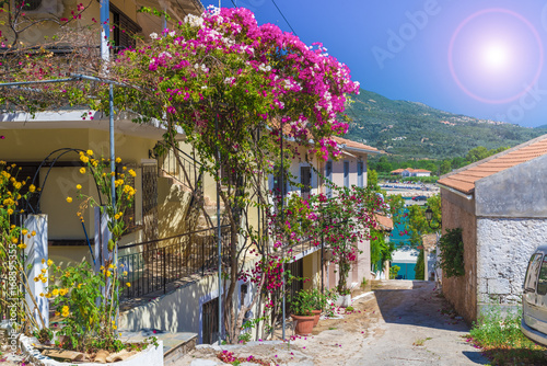 Wall mural Traditional street with house and flower in Greece.