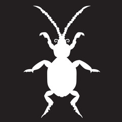 White beetle on a black forehead. vector illustration. Drawing by hand.