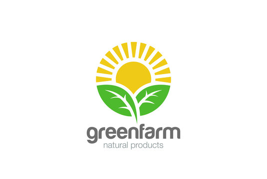 Sun rise Leaves Logo vector. Eco green Farm natural products