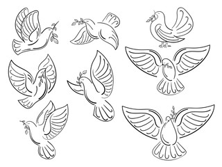 A set of world pigeons with a branch of an olive. Collection of flying white doves. Logos with stylized birds. A symbol of peace.