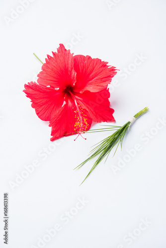 hibiscus flower or jasvand phool and durva or durva or green grass