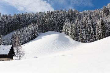 Wall Mural - Winter landscape, Austria