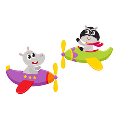 Cute funny animal pilot characters flying on airplane - hippo and raccoon, cartoon vector illustration isolated on white background. Little baby hippo and raccoon characters flying on airplane