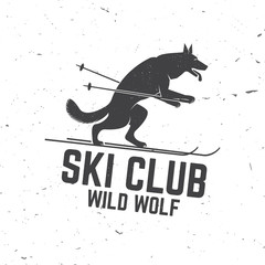 Ski club concept with wolf.