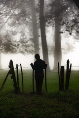 Standing at a fence in a misty forest