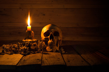 Skull and light candle with candlestick and dried flowers on brown wooden plate for Halloween night