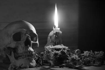 Skull and light candle with candlestick and dried flowers on brown wooden plate for Halloween day