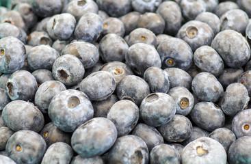 Fresh Juicy Organic Blueberries