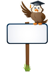 Owl On A Sign