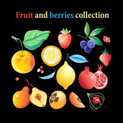 Vector set of bright tasty fruits and berries