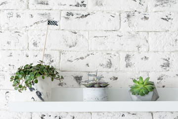 Modern loft scandinavian interior. Succulent plants on shelf over white brick wall background. Horizontal with copy space for text