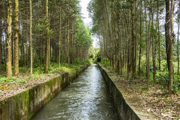 Irrigate canal scenery