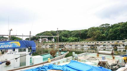 漁港 橋立