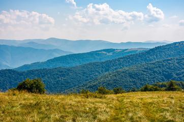 grassy hillside on high altitude ridge in autumn