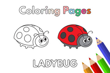 Cartoon Ladybug Coloring Book