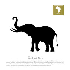 Black silhouette of an African elephant on a white background