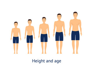 Height and Age Stage of Growth from Boy to Man. Vector
