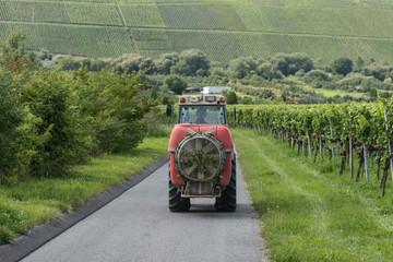 Spray-Maschine auf kleinem Traktor im Weinberg