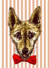 illustration bulldog. Sketch style dog. Symbol of 2018 new year