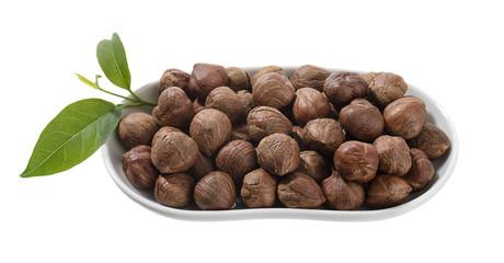 Hazelnut in White Plate