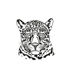 Black and white vector sketch of a muzzle of a jaguar