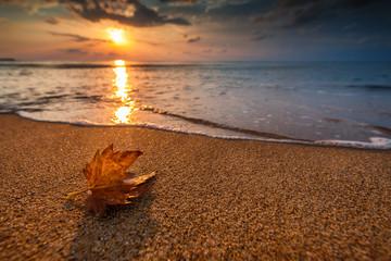 Aluminium Prints Autumn Beautiful sunrise over the sea