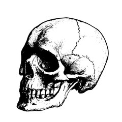 Scary black skull on a white background sketch of a tattoo