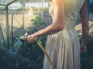 Woman in dress watering tomatoes at sunset