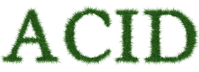 Acid - 3D rendering fresh Grass letters isolated on whhite background.