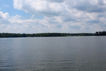 The lake and the tree line and the white clouds in the sky.