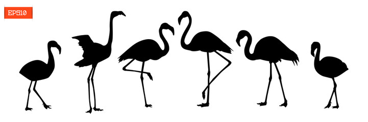 Set of silhouettes of flamingo birds
