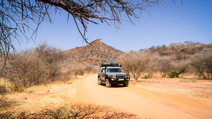 Roadtrip mit Jeep durch Afrikas Savanne
