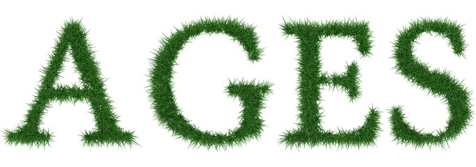 Ages - 3D rendering fresh Grass letters isolated on whhite background.