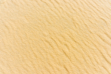 Top view of a sand sea bottom