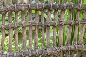 Fence of bamboo stems tied with ropes, background