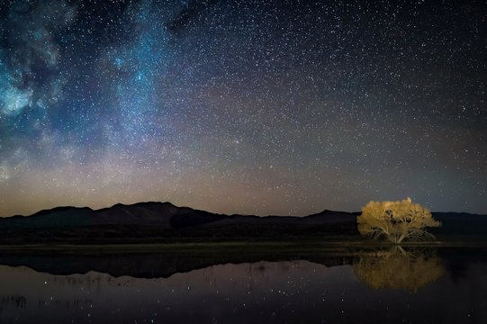 Starry night sky reflected in water, silhouetted mountains, and glowing golden tree