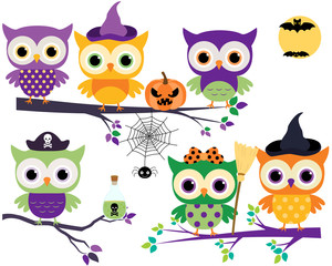 Cute Halloween owls in orange, purple and green colors on tree branches with broom, pumpkin and spider
