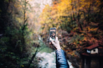 woman taking picture in the forest