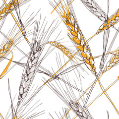 Vector seamless pattern with hand drawn ear of wheat. Hand drawn sketched illustration. Concept for agriculture, organic cereal products, harvesting grain, bakery, healthy food.