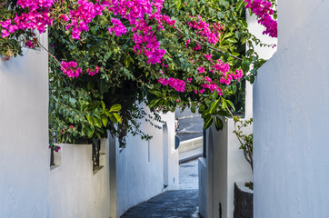 Alley with slope to the sea island stromboli italy