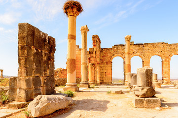 Volubilis, an excavated Berber and Roman city in Morocco, ancient capital of the kingdom of Mauretania. UNESCO World Heritage Wall mural